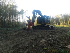 2014_01-nov_Avenieres-chantier-defrichage_Center-Parc-Roybon_3948